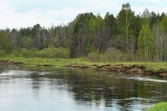 Großes Wasser im Vorfrühling Lizenzfreie Stockbilder