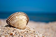 Großes weißes schönes rundes Oberteil auf dem links auf einem Hintergrund des sonnigen Tages des blauen Meersandsommers Stockfoto