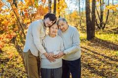 Großmutter, Großvater und erwachsener Enkel, die im Herbstpark umarmen stockbild