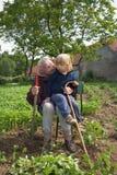 Großmutter und Enkel Stockfotografie