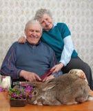 Großmutter- und Grand-dadlachen an einem Kaninchen Lizenzfreie Stockfotografie