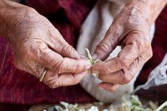 Großmutterhände Stockfotografie