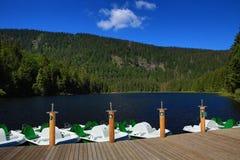 Großer Arbersee是一个湖在Bayerischer瓦尔特,巴伐利亚,德国 库存照片