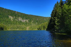 Großer Arbersee is a lake in Bayerischer Wald, Bavaria, Germany Royalty Free Stock Image