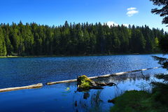 Großer Arbersee is a lake in Bayerischer Wald, Bavaria, Germany Stock Images