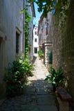 Grožnjan, Istria. Alley in Groznjan, a small village in Istria (Croatia stock photos