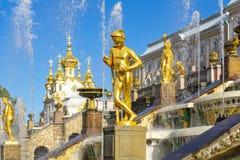 Gro?artige Kaskade von Brunnen von Peterhof-Palast, St Petersburg, Russland lizenzfreie stockfotos