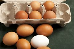 Gro?aufnahme von rohen H?hnereien im grauen Kasten, Eiwei?, braunes Ei auf gr?nem Hintergrund stockfotografie