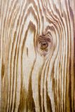Grão da madeira do cedro Fotos de Stock Royalty Free