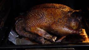 Gro?e Ente gebacken im Ofen stock video footage