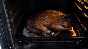 Gro?e Ente gebacken im Ofen stock video