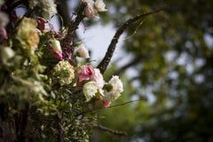 gro?er Blumenstrau? von verschiedenen Blumen auf einem unscharfen Hintergrund des blauen Himmels stockfotografie