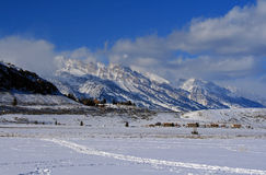 Großartige Tetons-Ansicht vom Elch-Schutz in Jackson Hole Wyoming Stockbild