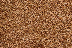 Groats (buckwheat). Royalty Free Stock Images