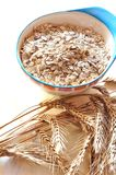 Groats of oat-flakes Stock Photography