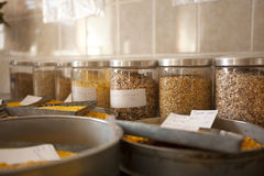 Groats samples in agricultural laboratory Stock Image