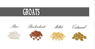 Groats set vector illustration. Royalty Free Stock Photography