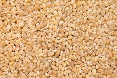 Groats on white background. Buckwheat is sprinkled / premium buckwheat groats on white background Stock Photo