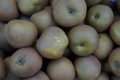 Grobe Äpfel Lizenzfreie Stockbilder