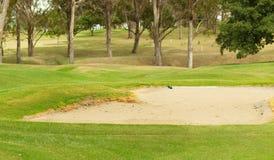 Grober Sandbunker des Golfs Lizenzfreie Stockfotos
