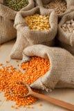 Grobes Sackzeug bauscht sich mit roten Linsen, Kichererbsen, Weizen und Grün Mung Lizenzfreies Stockfoto