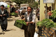 Grocer carrying vegetables to his stand on bazaar (market) in Iraq Stock Image