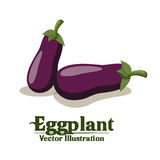 Groceries design Stock Photos