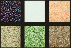 Grocery. Grasses of lentils, peas, buckwheat, rice and haricots Royalty Free Stock Photography