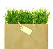 Grocery bag with full of fresh green grass Royalty Free Stock Photography