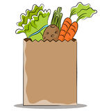 Grocery Bag with Healthy Vegetables Stock Images