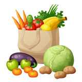 Grocery bag isolated on white background. Cartoon  illustration Royalty Free Stock Photo