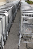 Grocery Carts. Two rows of stacked grocery carts in front of supermarket Stock Images