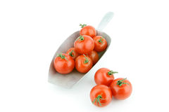 Grocery scoop with tomatoes Stock Images