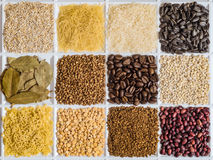 Grocery set of food products. Barley grits, vermicelli, rice, sunflower seeds, bay leafs, buckwheat, roasted coffee beans, pearl barley, figured macaroni Stock Photography