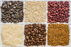 Grocery set of food products. Sunflower seeds, pearl barley, dried seeds of red beans, rice, roasted coffee beans, freeze-dried instant coffee Stock Images