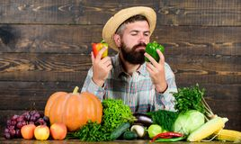 Grocery shop concept. Buy fresh homegrown vegetables. Man with beard proud of his harvest vegetables wooden background. Farmer with organic vegetables stock photo