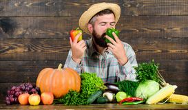 Grocery shop concept. Excellent quality vegetables. Just from garden. Buy fresh homegrown vegetables. Man with beard. Proud of his harvest vegetables wooden royalty free stock photography