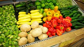 Grocery Store Bin full of brightly colored produce. Grocery Store bin full of brussel sprouts, squashes, bell peppers, cucumbers, and beans Royalty Free Stock Images