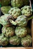 Grocery Store Bin Full of Fresh Green Artichokes Stock Images