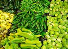Grocery Store Bins Filled With Chilies Stock Images
