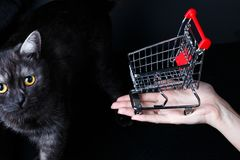 Small miniature shopping cart on dark black background stock images