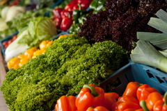 Grocery store - Close-up of vegetable Royalty Free Stock Image