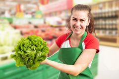 Grocery store employee showing lettuce royalty free stock photography