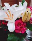 Roses lilies flowers pink boucket royalty free stock photo