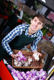 Grocery worker selling fresh garlic Stock Images