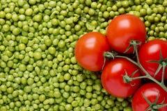 grochów pomidory Fotografia Stock
