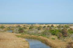 Grochowa wyspa Fotografia Stock