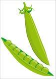 Grochowy strąk Fotografia Stock