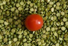 grochy pomidorowi obrazy royalty free