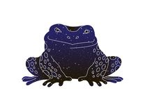 Grodaöversiktsbild Stiliserad vektorlinje djur illustration, kontur för färg för natthimmel som isoleras på vit bakgrund vektor illustrationer